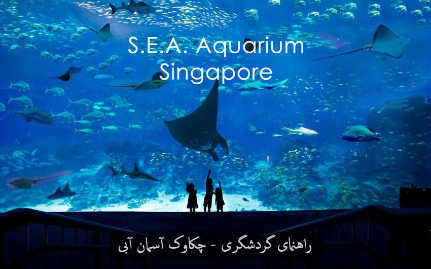سی آکواریوم | جاذبه گردشگری سنگاپور