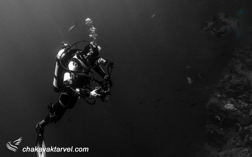 مرکز غواصی Harry Diving Center