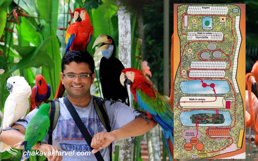 پارک پرندگان پنانگ و نقشه بازدید و راهنمای باغ پرندگان پنانگ مالزی