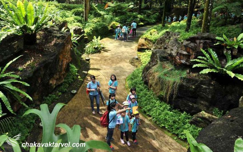 باغ های گیاهی شناسی سنگاپور