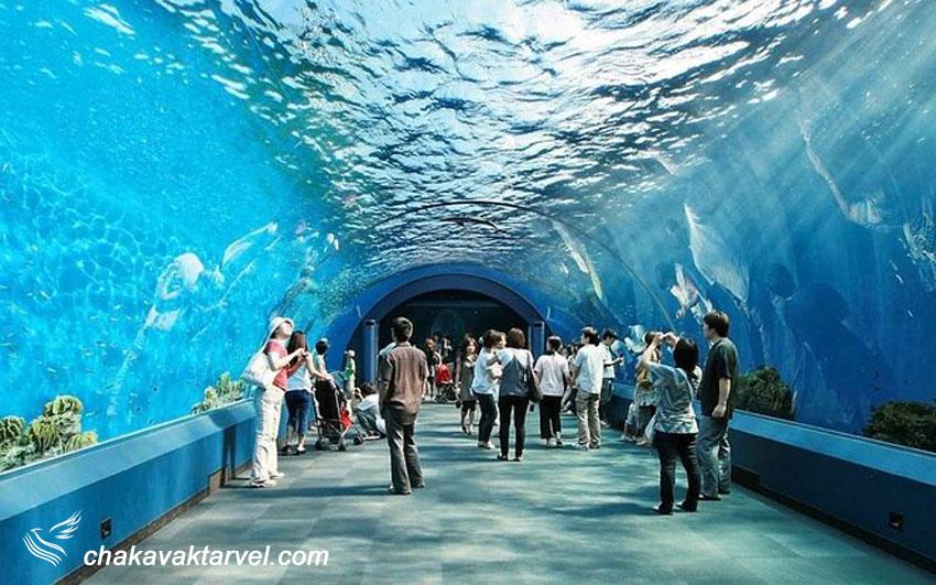 اولین آکواریوم مدرن تایلند با نام دنیای زیر آب | Underwater World Pattaya