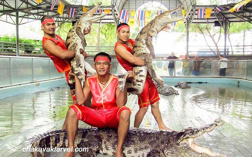 مزرعه کروکودیل ها و پارک سنگ های چند میلیون ساله | Stone Park Pattaya Crocodile Farm