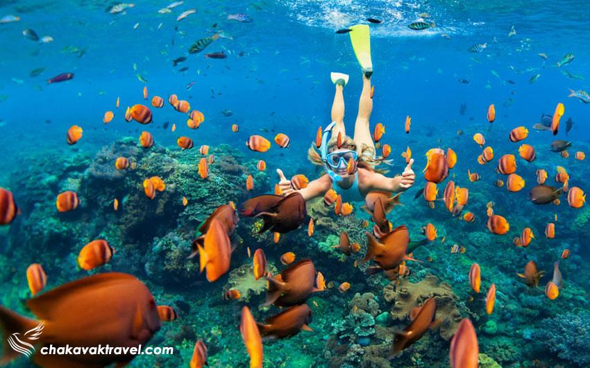 جزیره پرهنتیان Perhentian Islands