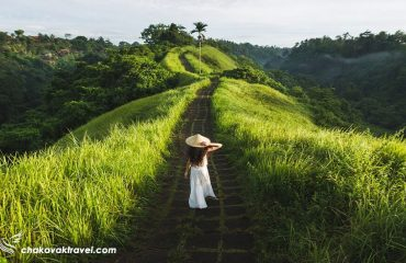 تور اوبود Ubud و بالی bali اندونزی