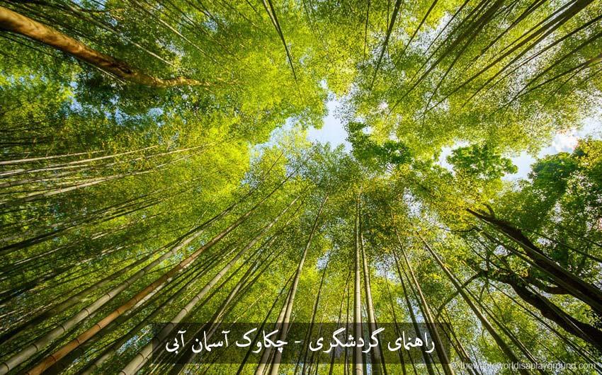 تولید و تکثیر بامبو در این منطقه از ژاپن و تاثیر بر جلوگیری از زلزله در ژاپن