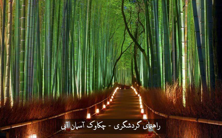 راهروی ایجاد شده در جنگل بامبو ژاپن تاثری علمی کاشت بامبو و جنگل بامبو