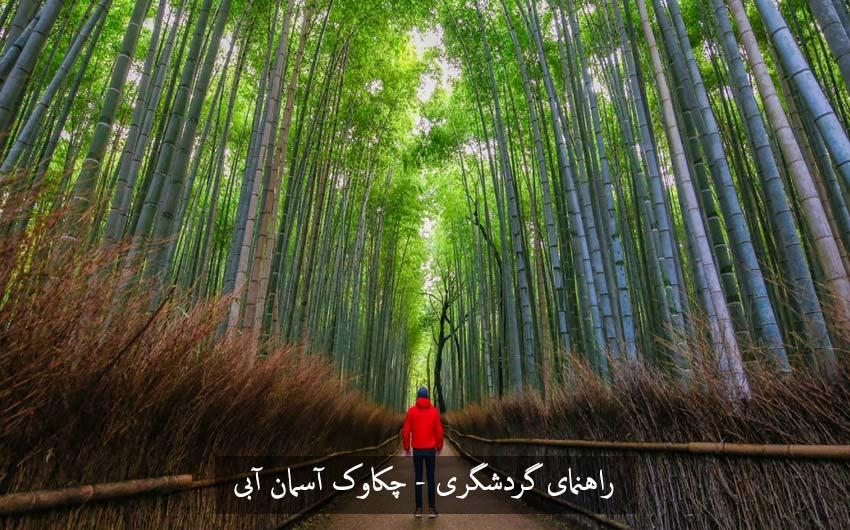 چگونه به جنگل یا دالان بامبو در کیوتو Kyoto برویم