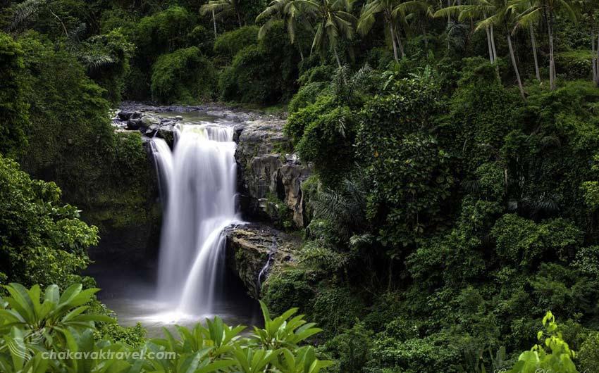 آبشار تگه نانگان Tegenungan waterfall در منطقه اوبود بالی کشور اندونزی