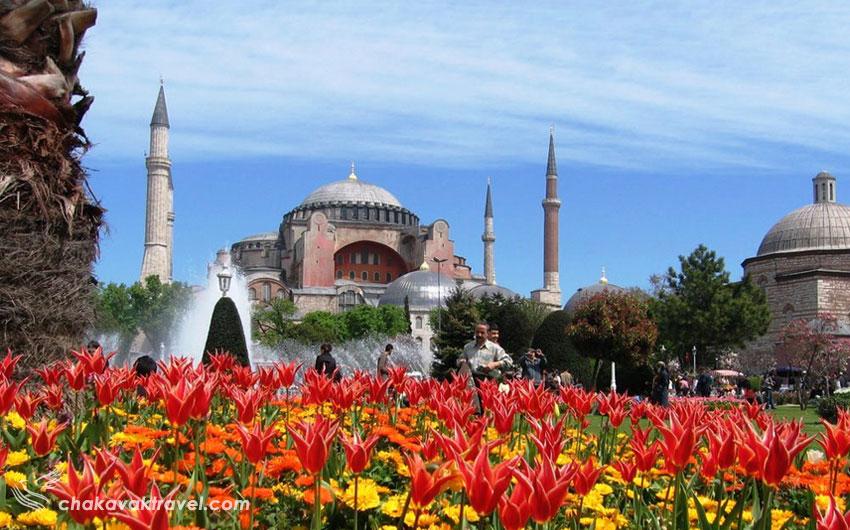 از مزایای سفر به ترکیه در فصل بهار بازدید از گلهای لاله استانبول در فصل بهار در ترکیه است