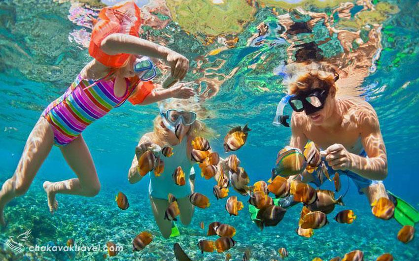 اسنورکلینگ Snorkeling یا غواصی سطحی چیست؟ غواصی در آبهای گرمسیری و ماهی ها و مرجانهای زیبا